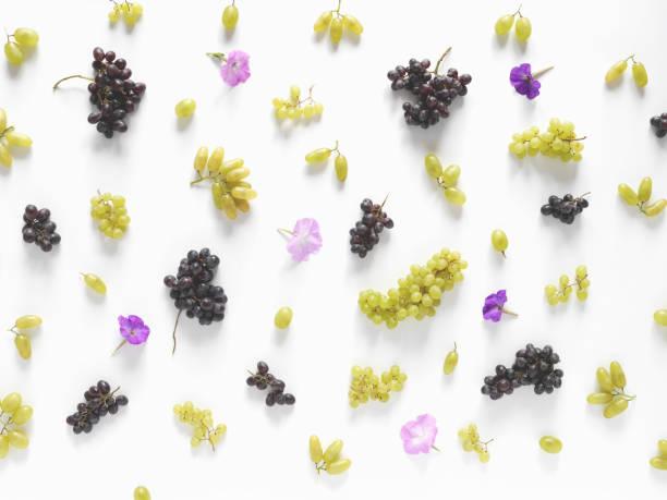 flores sobre un fondo blanco de uvas negras y verdes, lila. - grapes fotografías e imágenes de stock