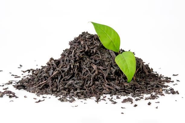 Schwarze und grüne Teeblätter mit weißem Hintergrund – Foto