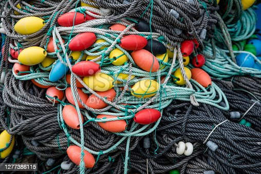 Black and grey fishing ropes connect colored buoys