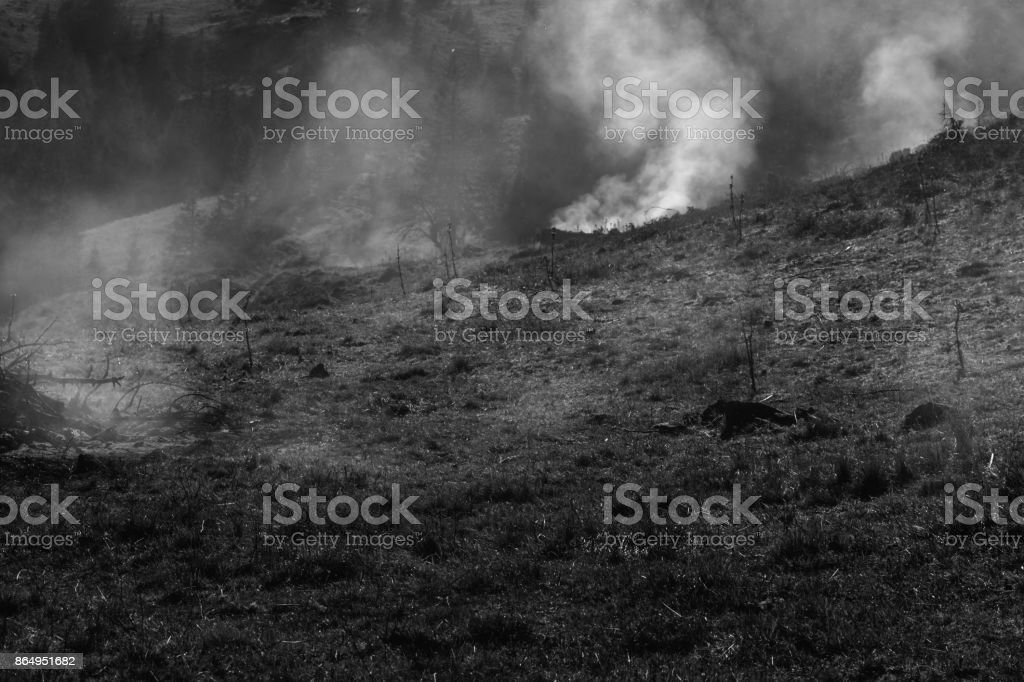 Black and whit picture of a burning Feldberg meadow stock photo