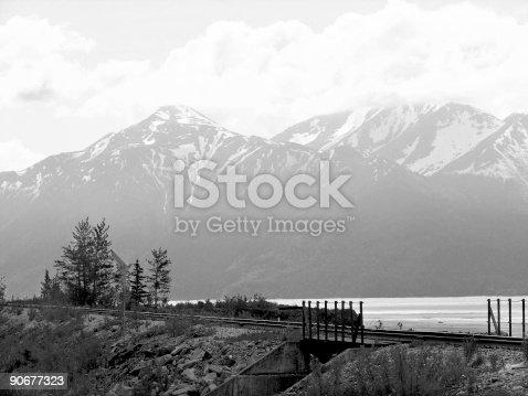 502780150istockphoto Black and White Alaska 90677323