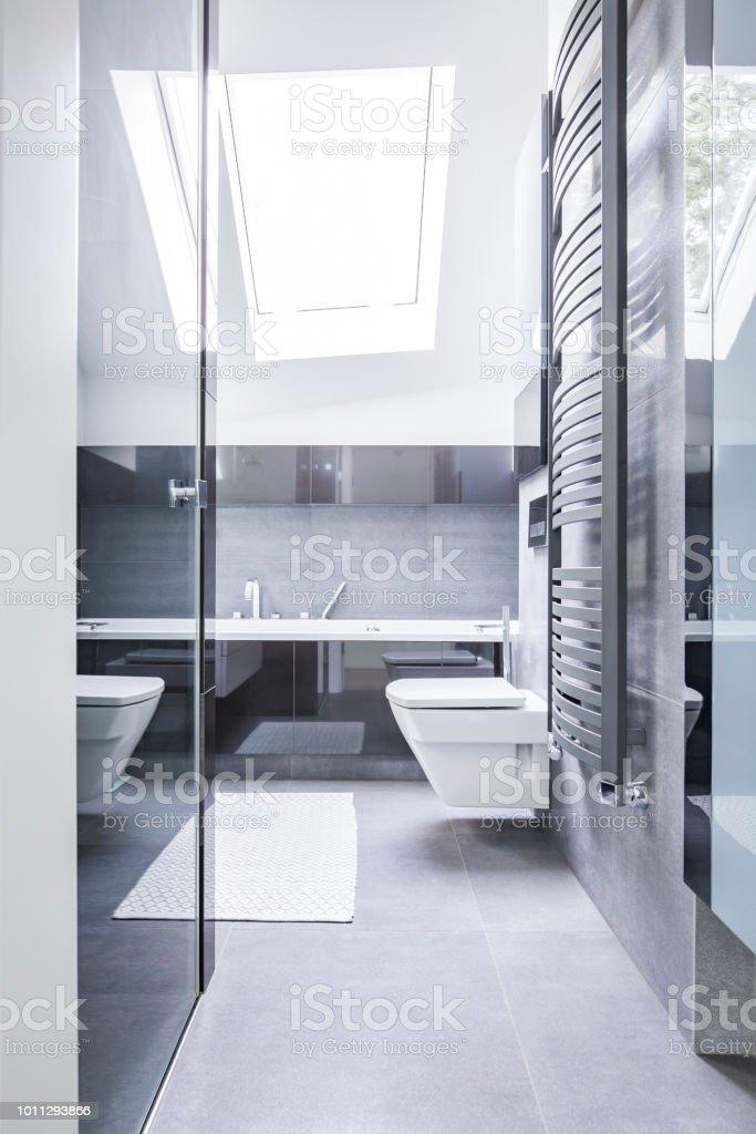 Schwarz Weiß Badezimmer Interieur Mit Reflektierenden ...