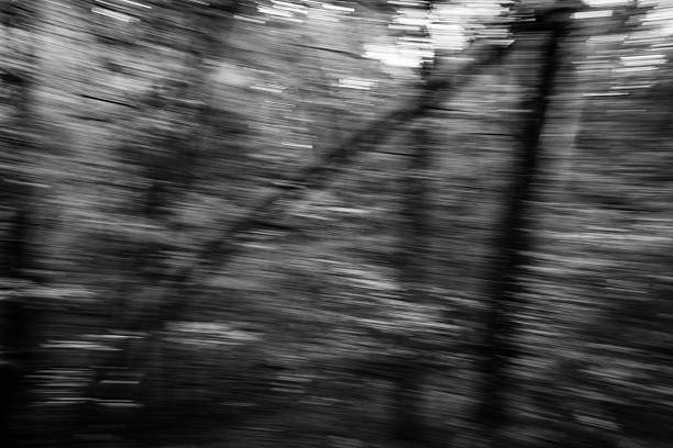 Black and White blur of nature stock photo