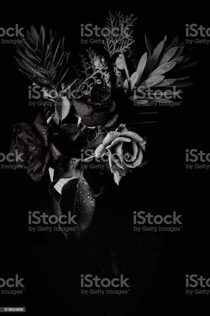 Black and white bouquet studio backdrop shot stock photo