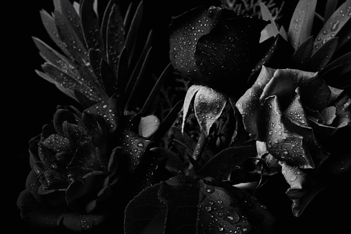 Black and white bouquet studio backdrop shot