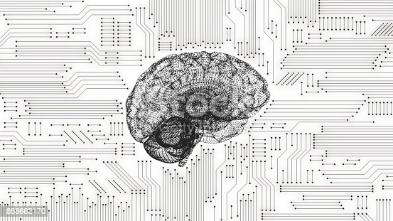 black and white computer brain with inverted circuit board graphic stock photo  u0026 more pictures