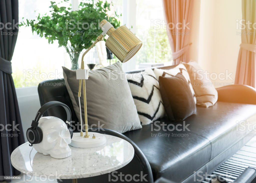 Black And White Cushion On Black Leather Sofa Stock Photo Download Image Now Istock