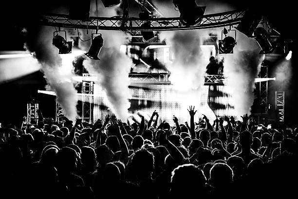 black and white dj and crowd in nightclub - popular music concert stock photos and pictures