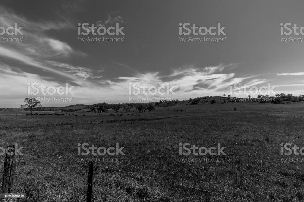 black and white farmland in NSW, Australia stock photo