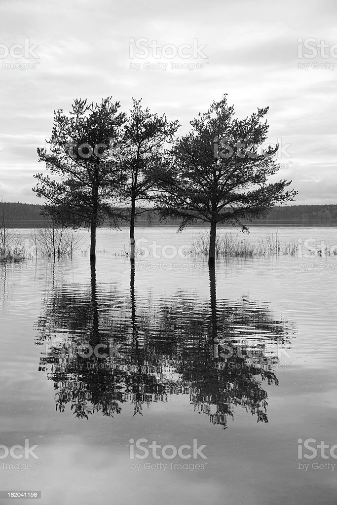 Black and white flood stock photo