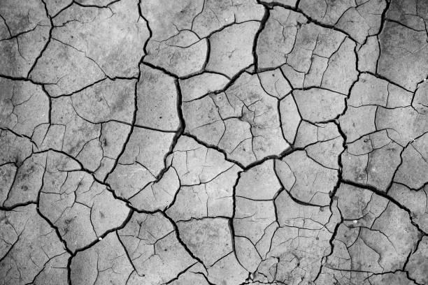 Black And White Full Frame Photo Of Cracked Earth Black And White Full Frame Photo Of Cracked Earth lake bed stock pictures, royalty-free photos & images
