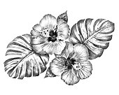 Black and white hibiscus flowers with monstera leaves hand drawing illustration for graphic resources