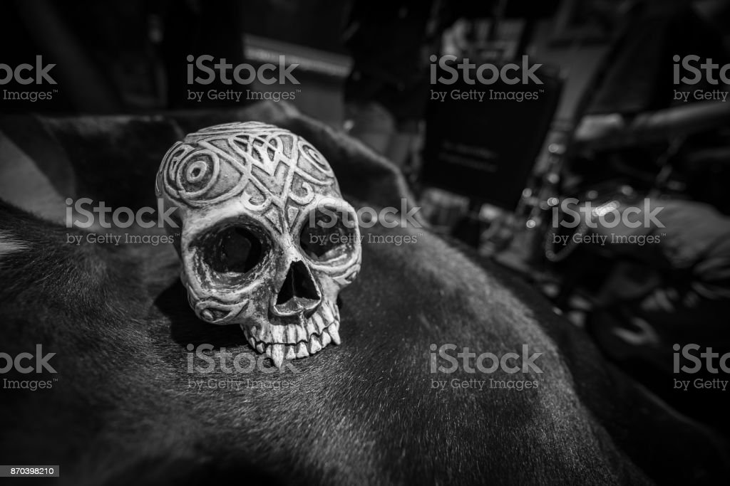 Black and White Human skull Model on cow skin texture stock photo