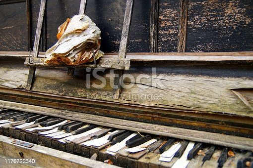 made of wood. old musical instruments