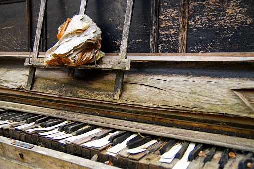 Black and white keys of a wooden broken keyboard piano. old open worn book on the piano. Old broken and Worn piano keys