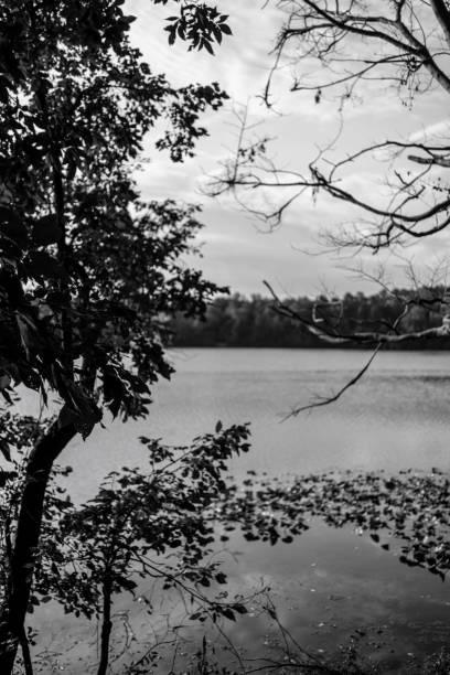 Black and white lake stock photo