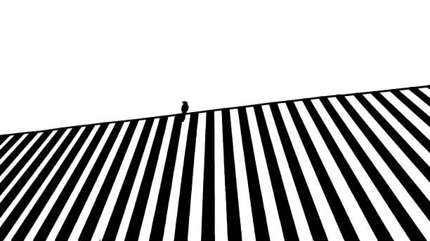 Líneas en blanco y negro. - foto de stock