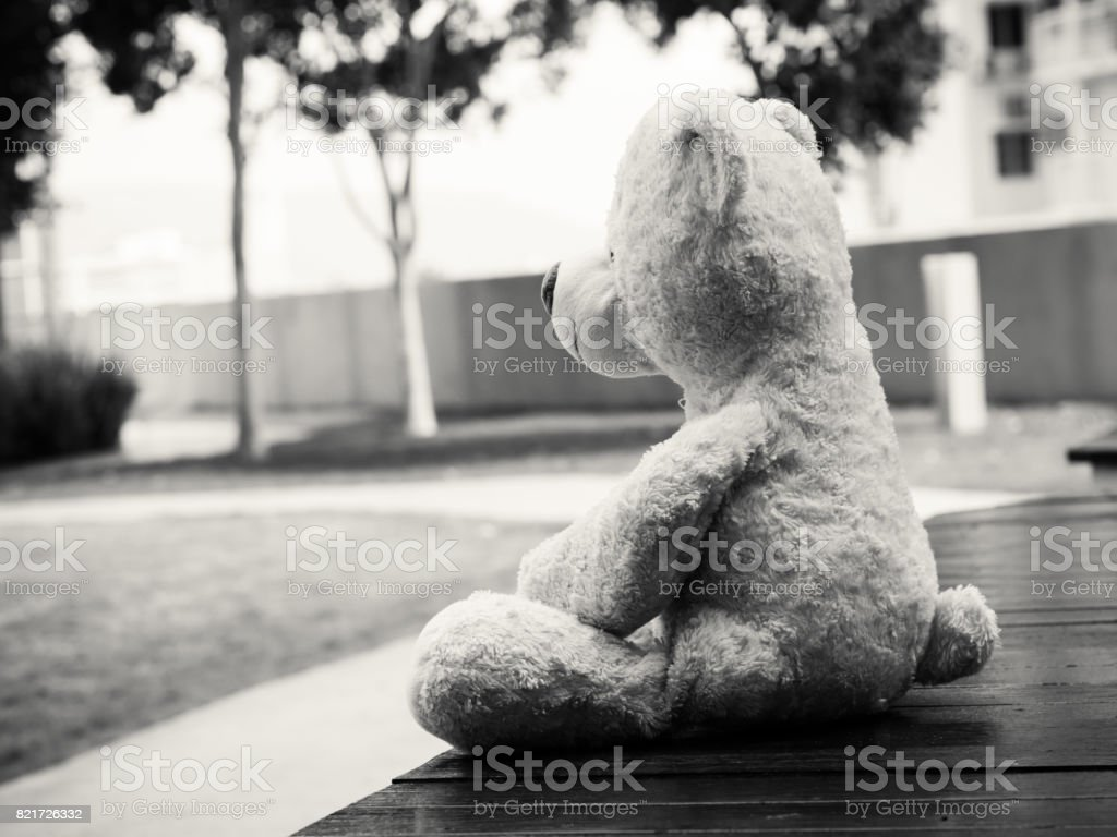 Black And White Lonely Teddy Bear Sitting On The Garden Looking Out Side Concept About