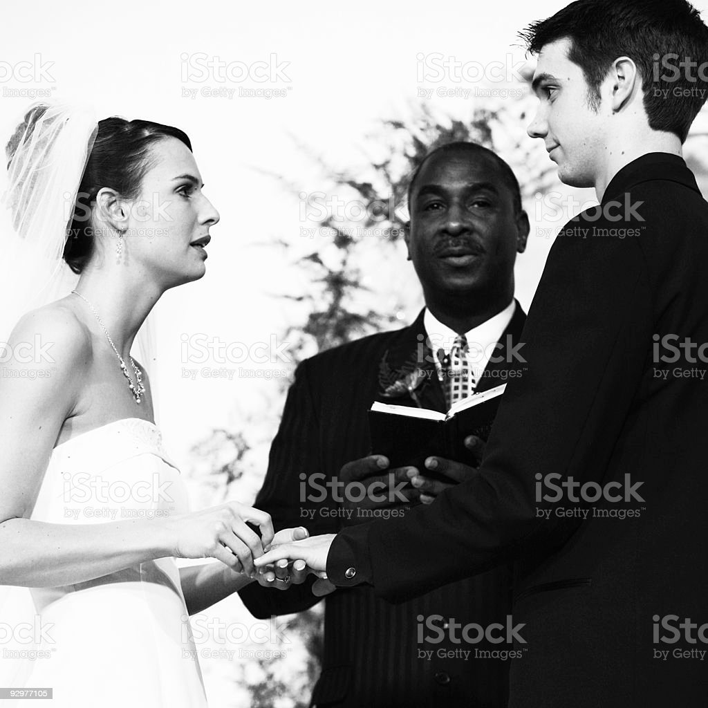 Black and White Marriage Portrait royalty-free stock photo
