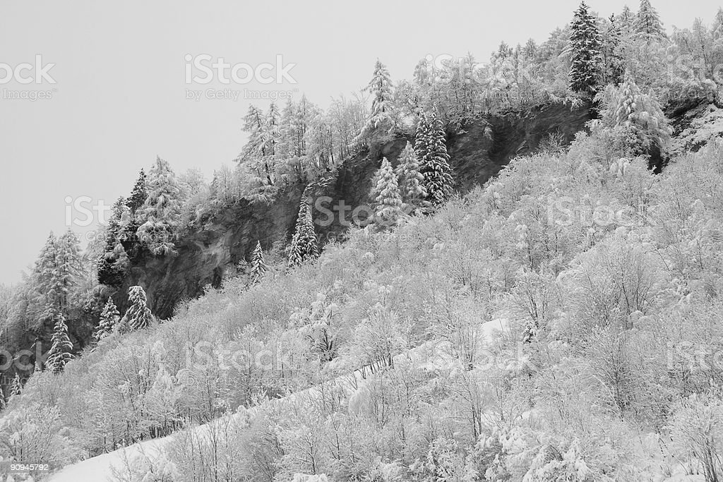 Black and white mountain forest royalty-free stock photo