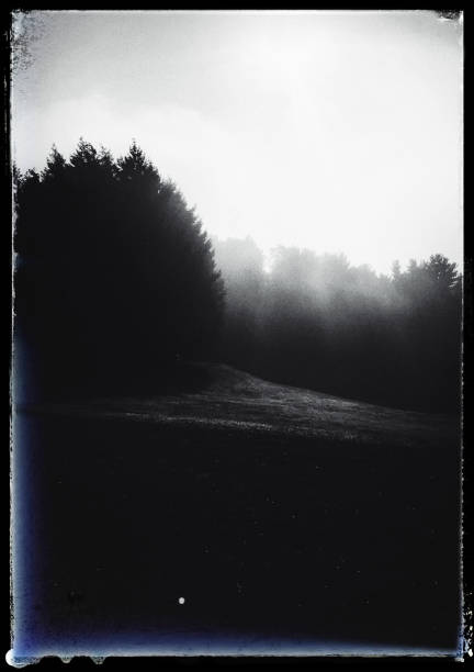 Black and White Nature Scene Surreal landscape with border.  iPhone taken on mobile device stock pictures, royalty-free photos & images