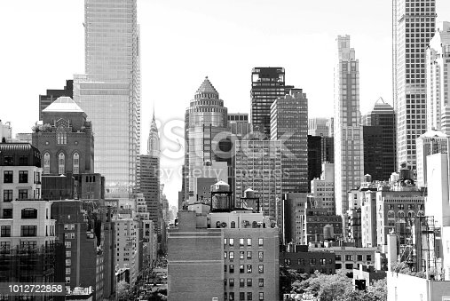 Black and White New York City Building View