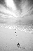 Black and white image of footsteps on the beach. Tropical beach located in Los Cabos, Mexico. Beautiful serenity and calm beauty of this stunning beach at the tip of the Baja California Peninsula. Cabo is known for its beautiful beaches, dry desert climate, and wonderful resorts. Themes of the image include relaxation, walking, vacation, pathway, footsteps, sand, beach, tropics, beach vacation, resort, fun in the sun, beauty, nature, calm, serene, serenity, and nature.