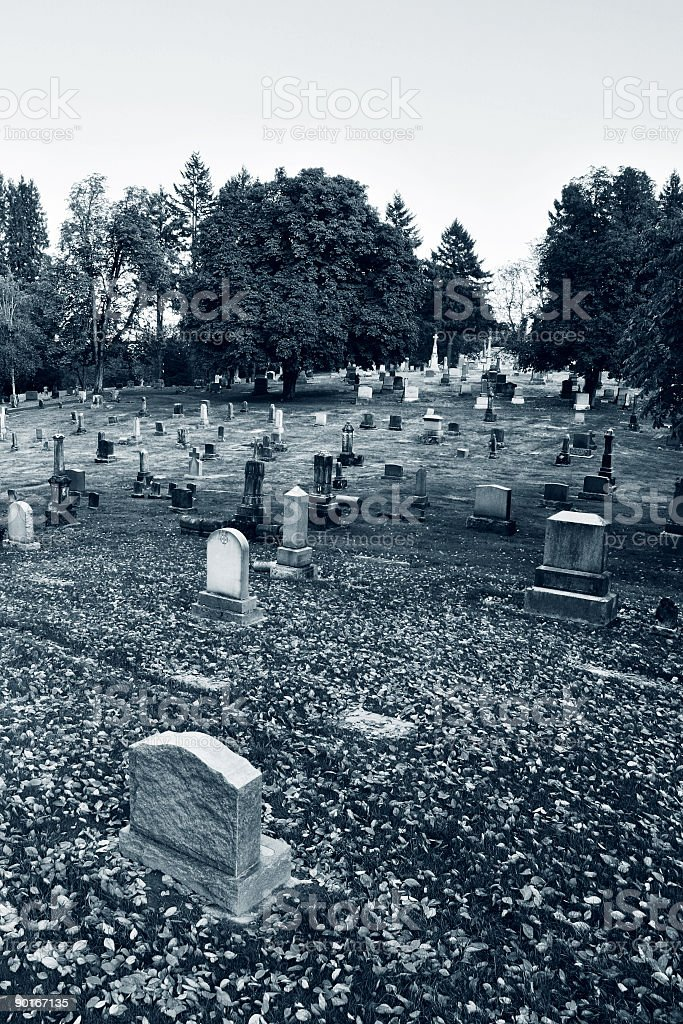 Black and White Photo of a Cemetary During the Day royalty-free stock photo