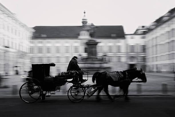 pferd-orientierte kutsche in wien - pferdekutsche stock-fotos und bilder