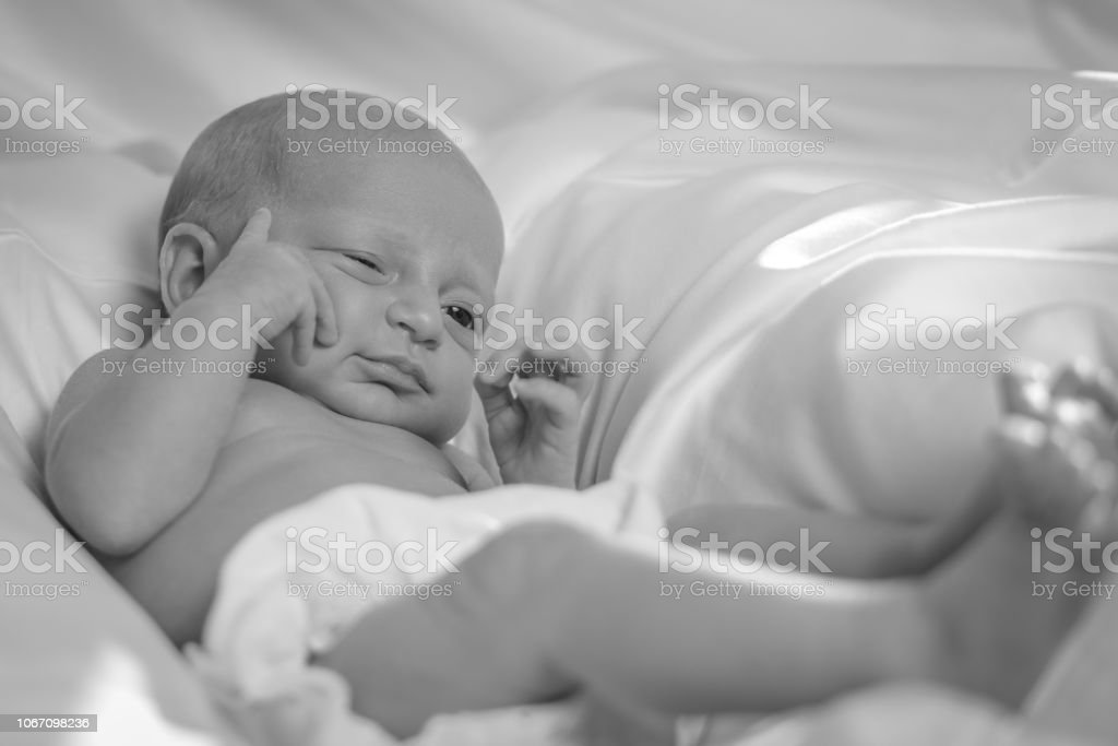 Black And White Photo Of A Newborn Baby Girl Stock Photo Download Image Now Istock