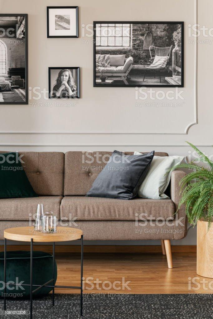 Schwarz Weiß Fotos Auf Graue Wand Stilvolle Wohnzimmer ...