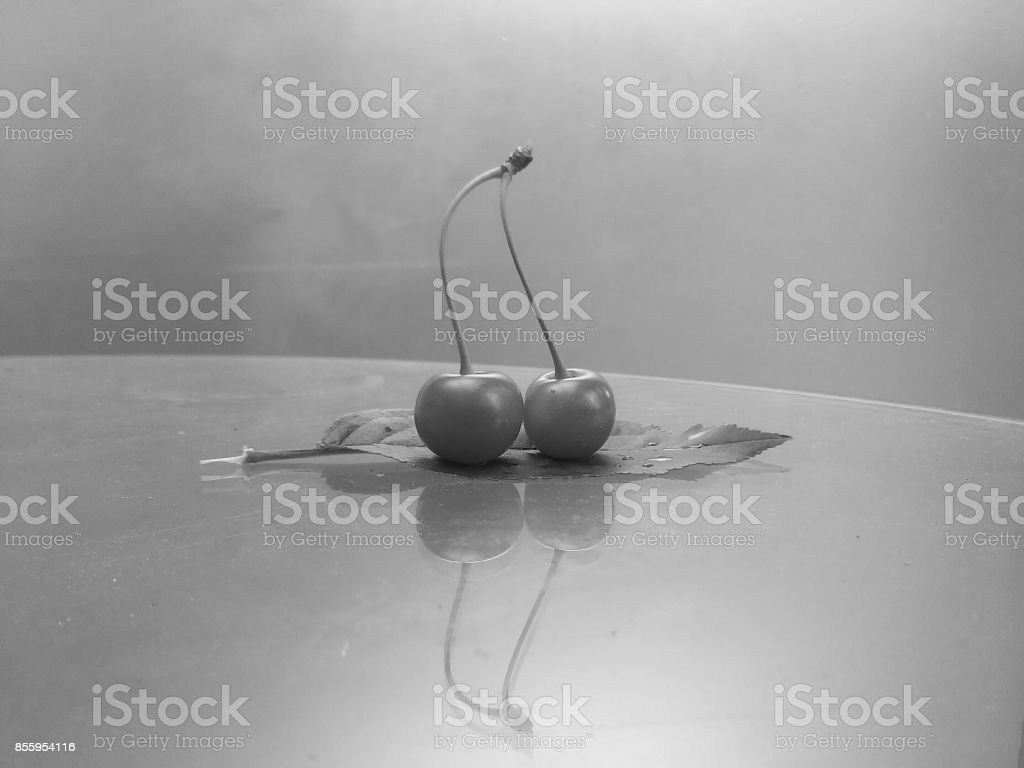 Black and white: reflection of couple cherries sailing on leaf stock photo