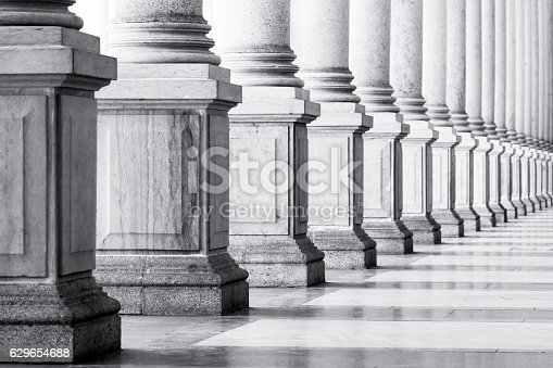 istock Black and white row of classical Columns with copy space, 629654688