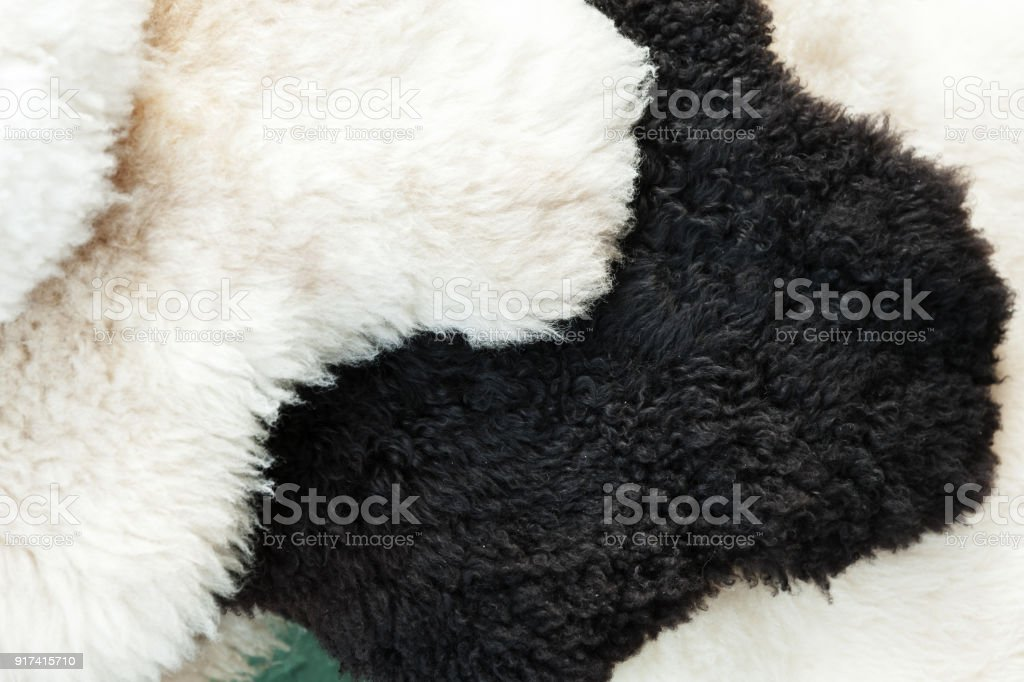 Black and white sheep skins stock photo