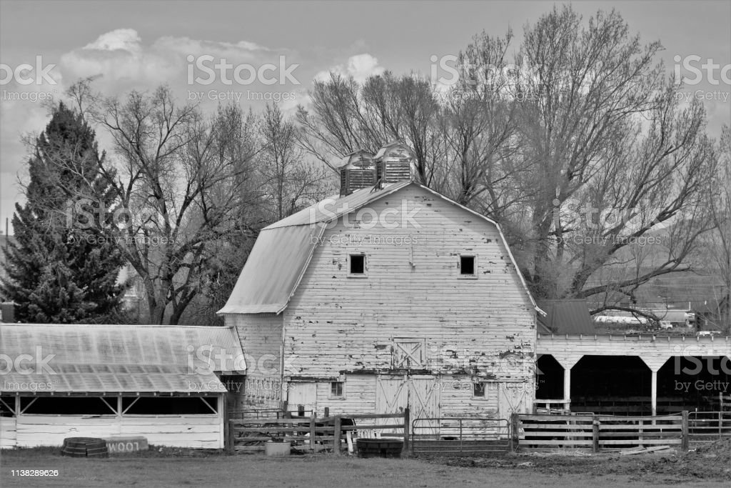 Black and White Shot of Old Barn stock photo