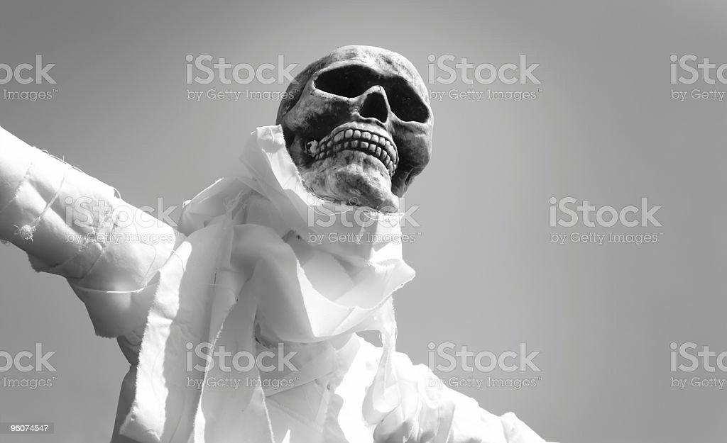 Black and White skeleton scarecrow royalty-free stock photo