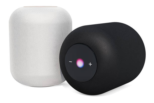 Black and white smart speakers, 3D rendering isolated on white background Black and white smart speakers, 3D rendering isolated on white background smart speaker stock pictures, royalty-free photos & images