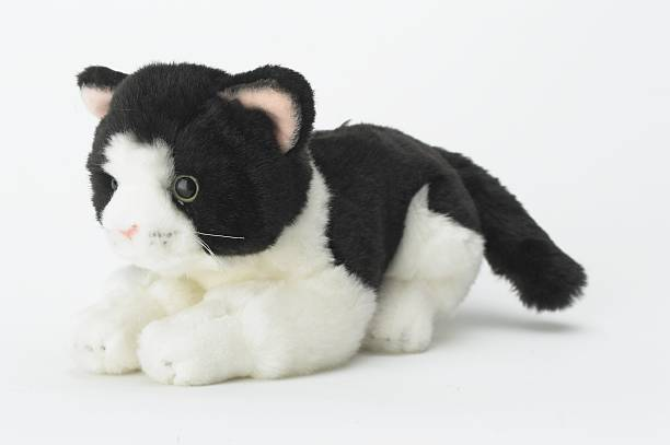 Black and white toy cat picture id502642943?b=1&k=6&m=502642943&s=612x612&w=0&h=mzpof8nq adejl1btbf06 md1yqjnqosg2fr6iiop44=