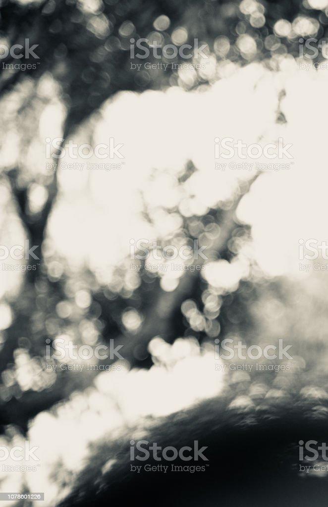 Black and white unique blurry background photo stock photo