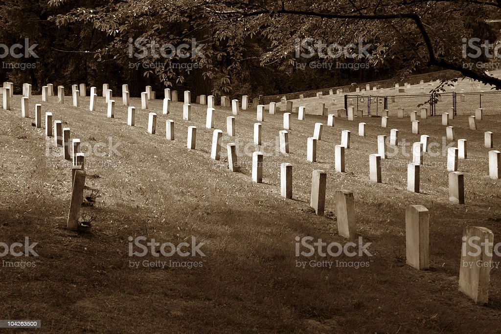 Black and White Veterans Cemetary Markers stock photo