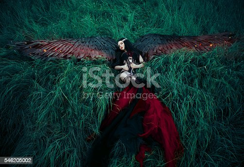 istock Black Angel. Pretty girl-demon 546205002