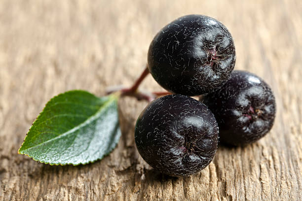 Black Aronia. – Foto