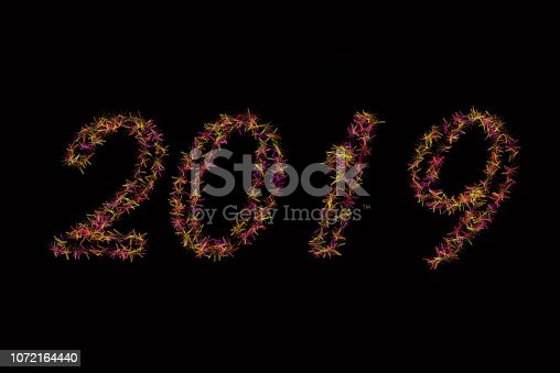 istock Black background 2019 article . Red and green 2019 New Year of on black background . Happy New Year Card design, web banner template, poster, lettering background . A 2019 article similar to Flower 1072164440