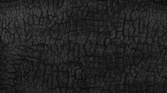 Grunge. Burned wood texture. Black background