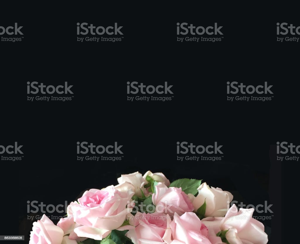 Black background with roses bouquet at the bottom stock photo