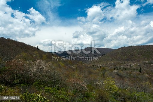 istock Black Balsam Area on the Blue Ridge Parkway 958146734