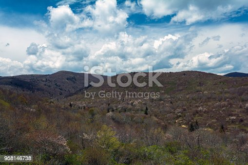 istock Black Balsam Area on the Blue Ridge Parkway 958146738