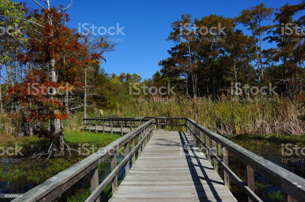 Black Bayou lake Boardwalk stock photo