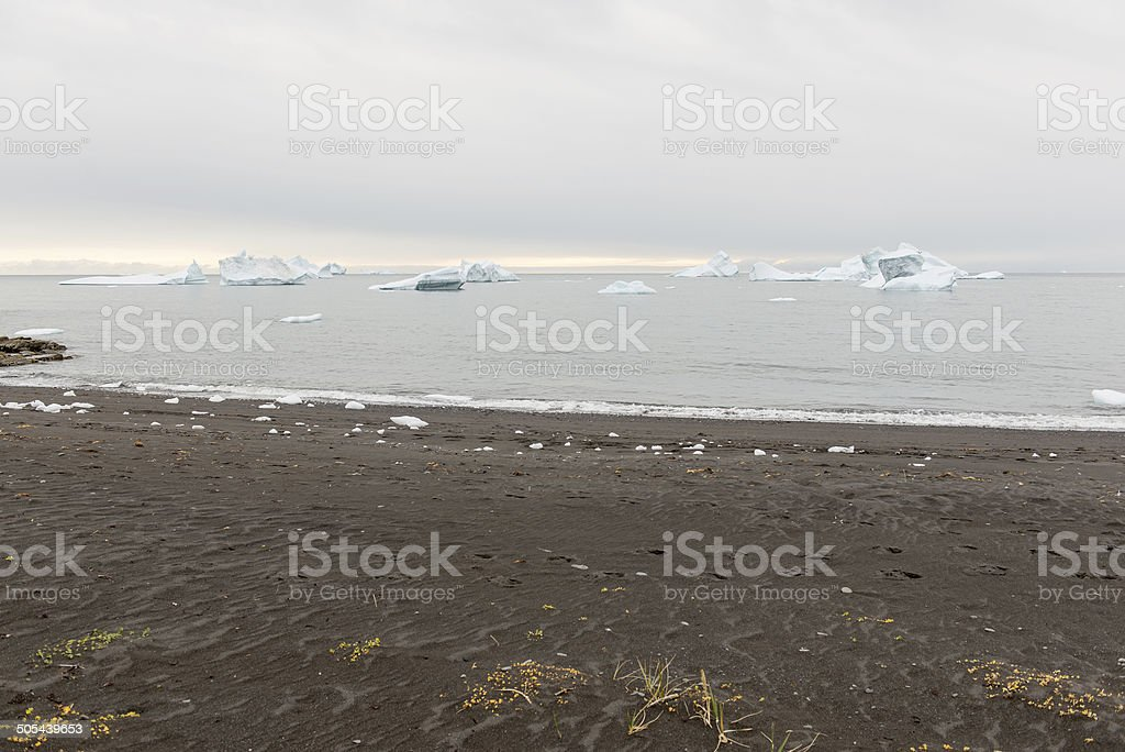 Black beach and icebergs royalty-free stock photo