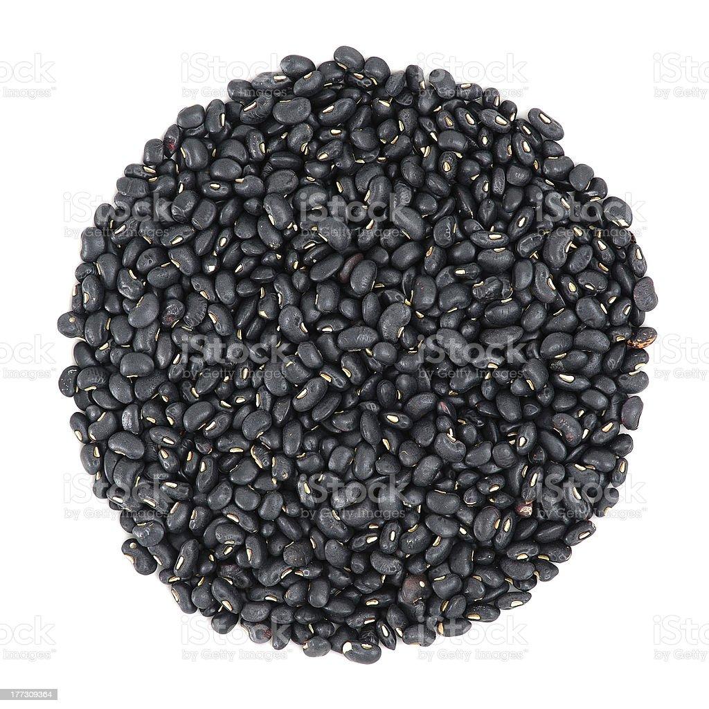 Black Bean stock photo